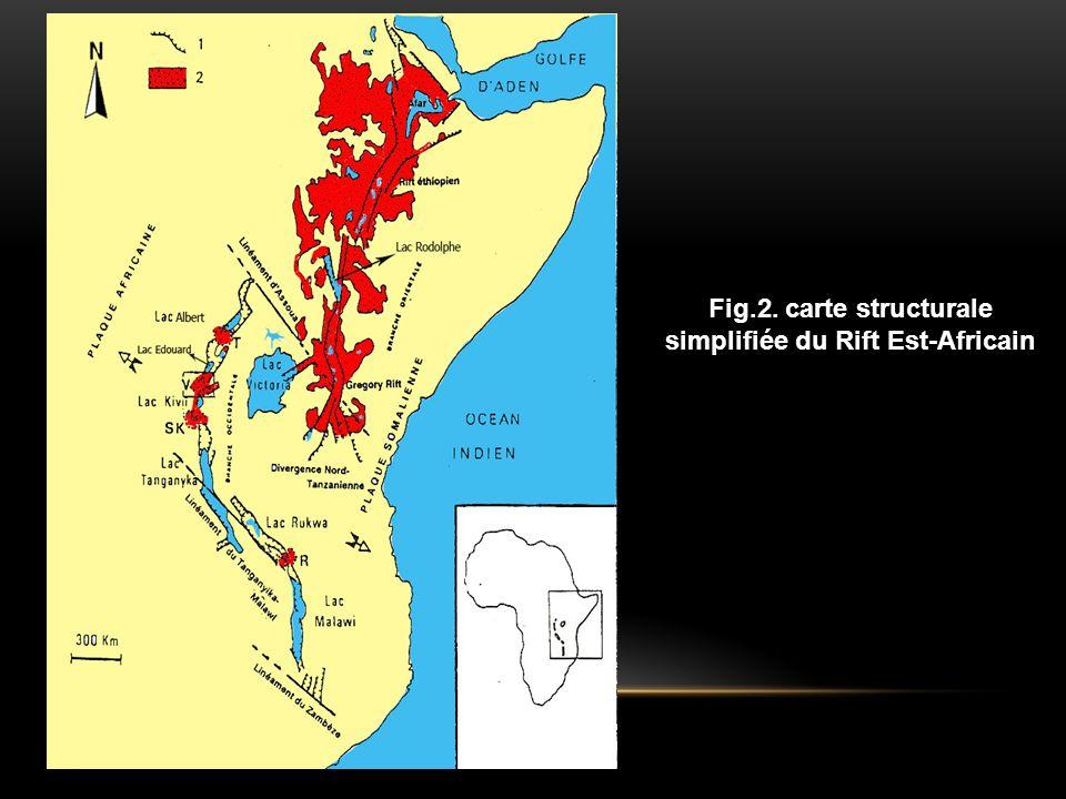 Fig.2. carte structurale simplifiée du Rift Est-Africain