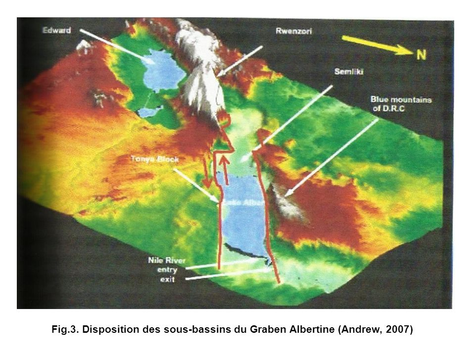Fig.3. Disposition des sous-bassins du Graben Albertine (Andrew, 2007)