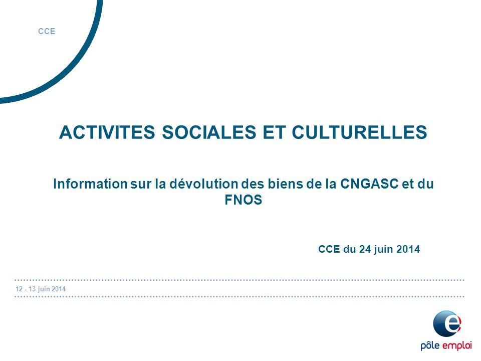 12 - 13 juin 2014 CCE ACTIVITES SOCIALES ET CULTURELLES Information sur la dévolution des biens de la CNGASC et du FNOS CCE du 24 juin 2014