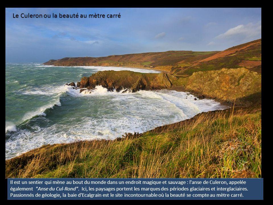 La Petite Irlande À la fin de la dernière ère glaciaire, seuls quelques milles marins séparent Aurigny, Burhou, les Casquets, les Ortac du vieux continent.
