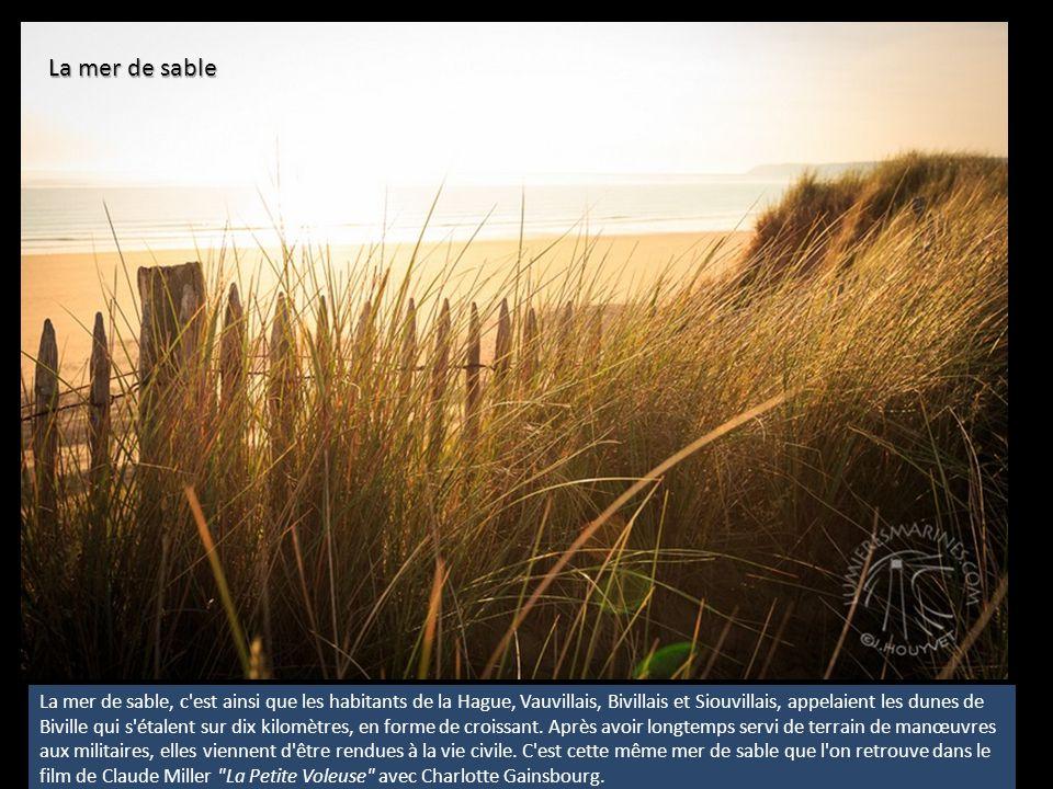 Sur la falaise, un arc-en-ciel terrestre De bas en haut, toutes les couleurs se mélangent en strates successives : le vert de la mer, l ocre du sable, le gris clair des galets, le rose éclatant des bruyères, l or flamboyant des ajoncs, le vert des enclos emmurés jusqu au ciel, bleu-blanc-gris.
