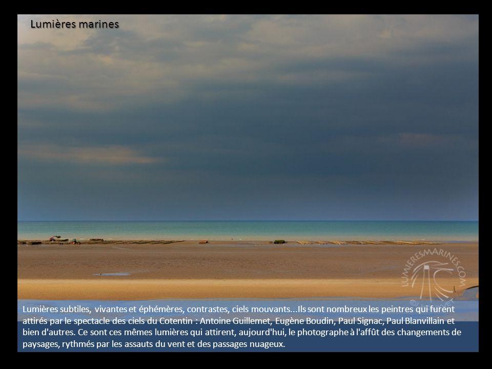 De la Baie des Veys aux plages de la liberté Immensité, espace vierge, long fil dunaire et plages infinies...
