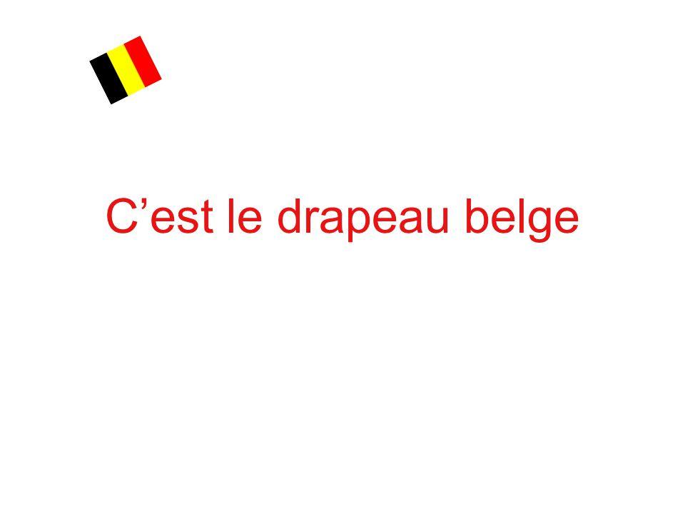 C'est le drapeau belge