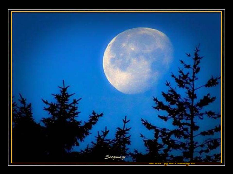 La lune saisit des paysages somptueux; Elle voit la mer avançant et reculant; Tout est immense, tout est baigné de bleu; Ce soir, la lune s'endort pai