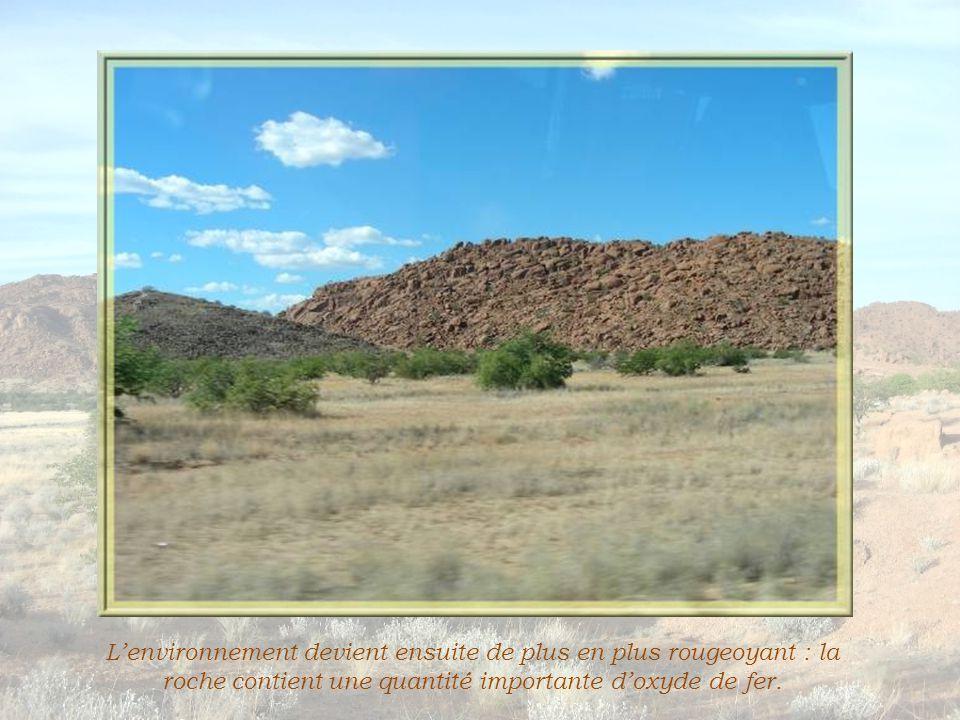 En voyant ces morceaux, on jurerait qu'il s'agit de fragments de roche!