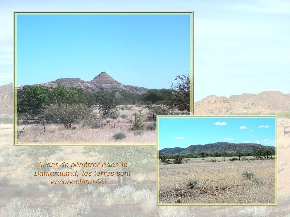 Le Damaraland (une appellation remontant à la période coloniale) n'est pas une région administrative distincte et je serais bien en peine d'en identifier les limites… C'est une zone communautaire qui exclut toute propriété individuelle.