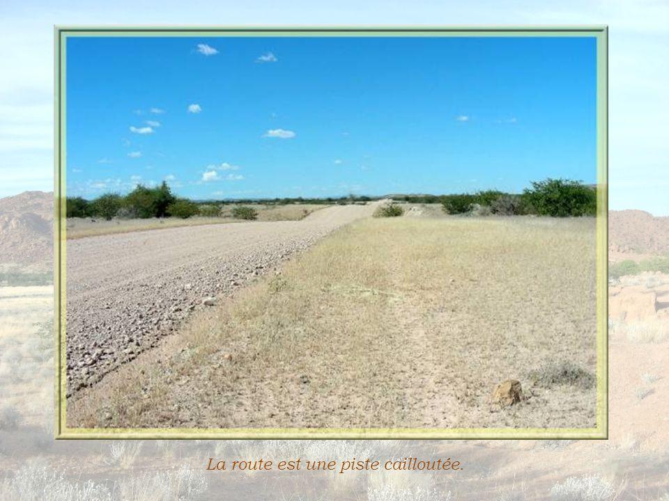Un paysage aride se déroule interminablement, des savanes garnies de hautes graminées blondes et de quelques buissons ou arbres nains… Puis le terrain devient plus accidenté, des amas de roches se profilent.