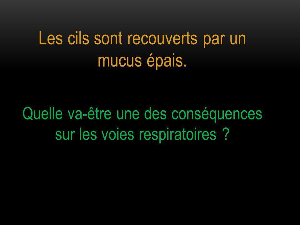 Les cils sont recouverts par un mucus épais. Quelle va-être une des conséquences sur les voies respiratoires ?