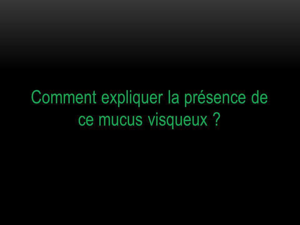 Comment expliquer la présence de ce mucus visqueux ?