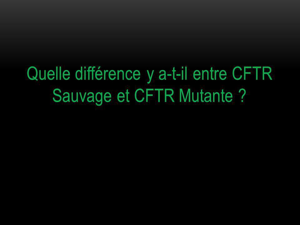 Quelle différence y a-t-il entre CFTR Sauvage et CFTR Mutante ?
