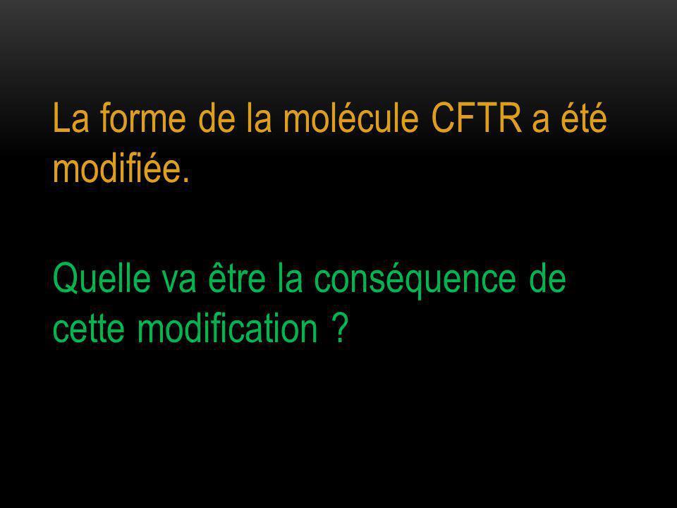 La forme de la molécule CFTR a été modifiée. Quelle va être la conséquence de cette modification ?