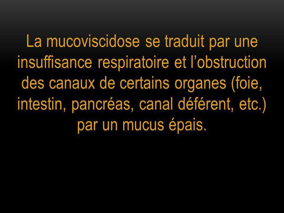 La mucoviscidose se traduit par une insuffisance respiratoire et l'obstruction des canaux de certains organes (foie, intestin, pancréas, canal déféren
