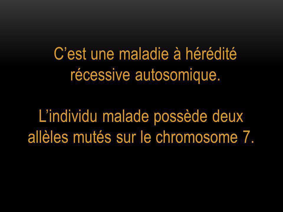 C'est une maladie à hérédité récessive autosomique. L'individu malade possède deux allèles mutés sur le chromosome 7.