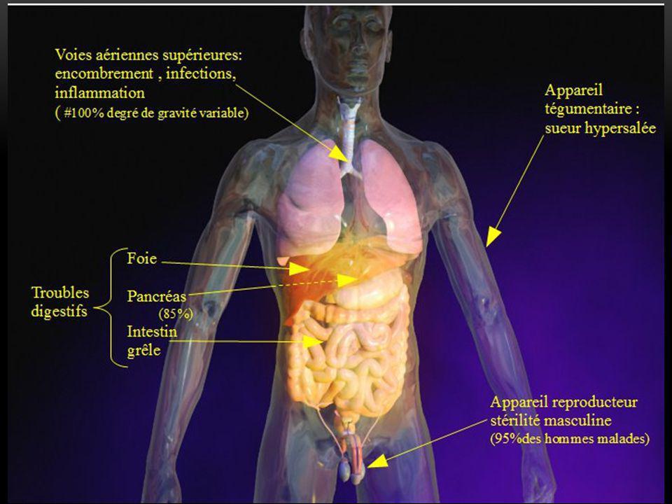 Dysfonctionnement Chez les individus atteints de mucoviscidose, la protéine CFTR n'assure plus le rejet des ions chlore ce qui favorise l'entrée des ions sodium et l'entrée d'eau dans la cellule
