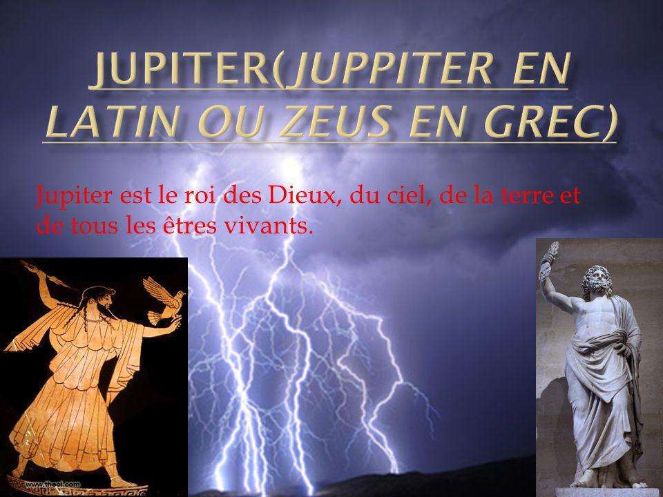 Jupiter est le roi des Dieux, du ciel, de la terre et de tous les êtres vivants.