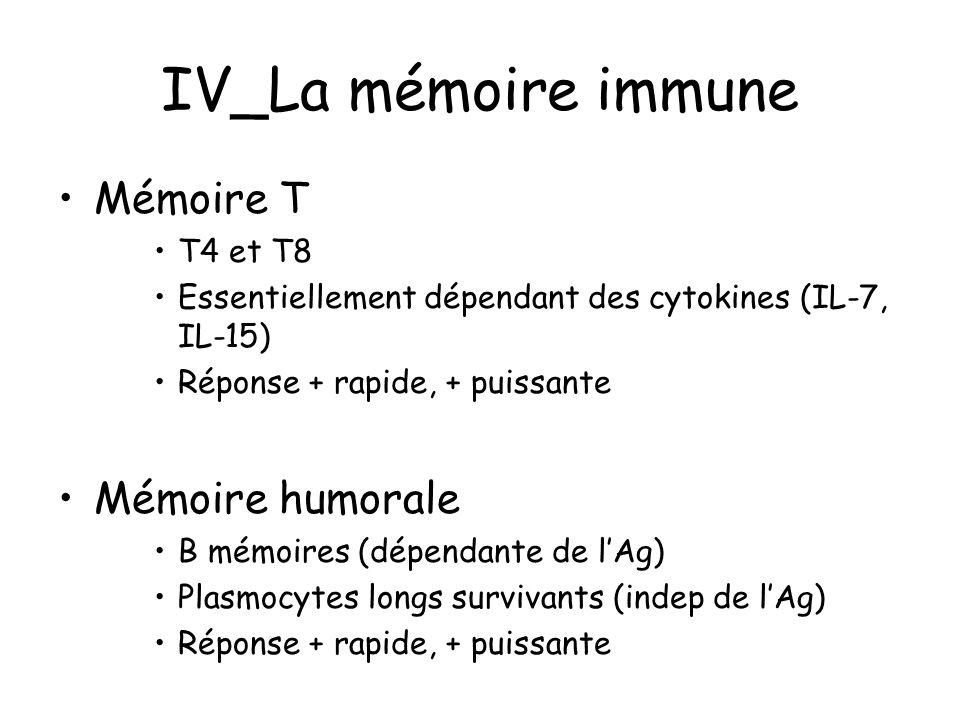 IV_La mémoire immune Mémoire T T4 et T8 Essentiellement dépendant des cytokines (IL-7, IL-15) Réponse + rapide, + puissante Mémoire humorale B mémoire