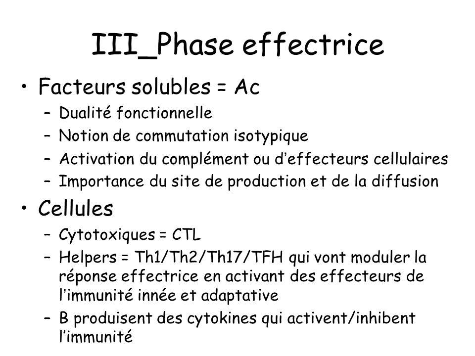 III_Phase effectrice Facteurs solubles = Ac –Dualité fonctionnelle –Notion de commutation isotypique –Activation du complément ou d'effecteurs cellula