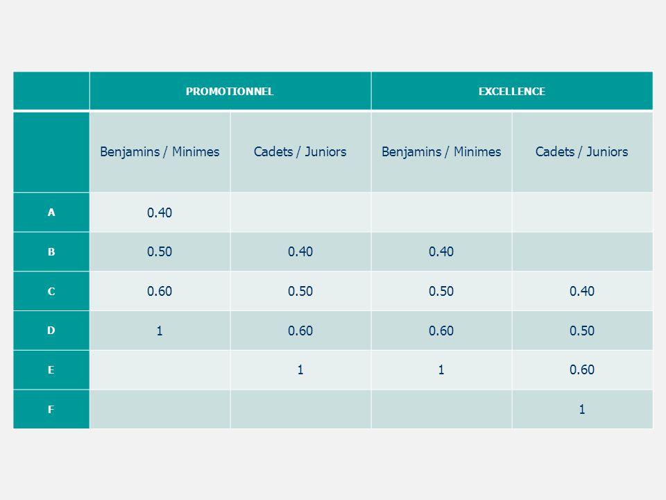 PROMOTIONNELEXCELLENCE Benjamins / MinimesCadets / JuniorsBenjamins / MinimesCadets / Juniors A 0.40 B 0.500.40 C 0.600.50 0.40 D 10.60 0.50 E 110.60
