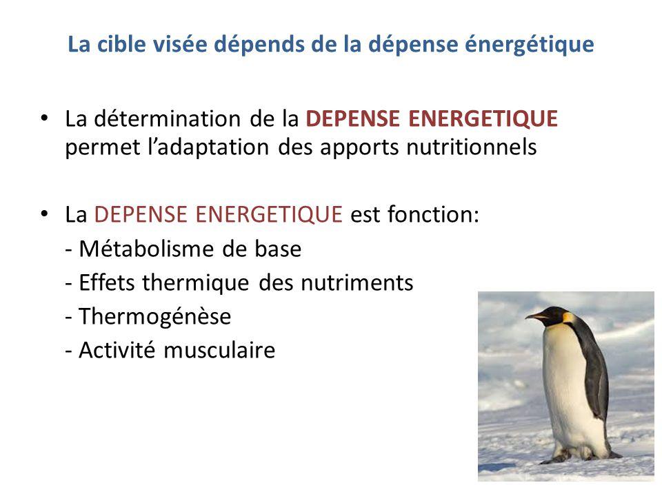 La cible visée dépends de la dépense énergétique La détermination de la DEPENSE ENERGETIQUE permet l'adaptation des apports nutritionnels La DEPENSE E