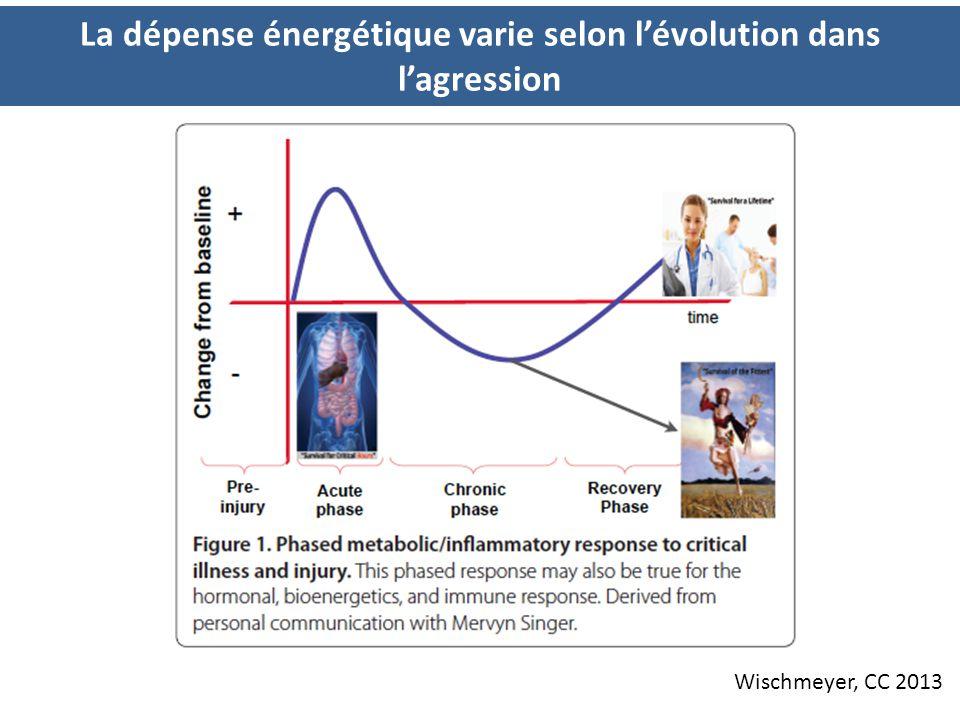 La dépense énergétique varie selon l'évolution dans l'agression Wischmeyer, CC 2013