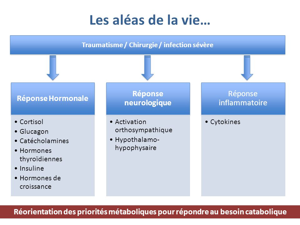 Les aléas de la vie… Traumatisme / Chirurgie / infection sévère Réponse Hormonale Cortisol Glucagon Catécholamines Hormones thyroïdiennes Insuline Hor