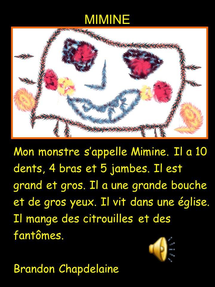Mon monstre s'appelle Mimine. Il a 10 dents, 4 bras et 5 jambes. Il est grand et gros. Il a une grande bouche et de gros yeux. Il vit dans une église.