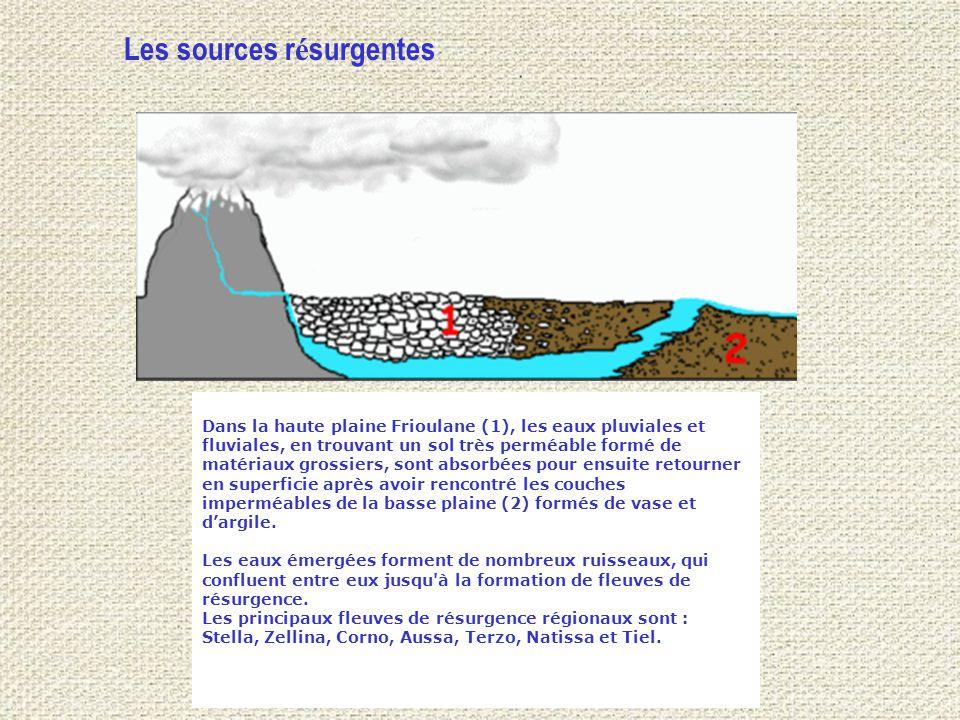 Dans la haute plaine Frioulane (1), les eaux pluviales et fluviales, en trouvant un sol très perméable formé de matériaux grossiers, sont absorbées pour ensuite retourner en superficie après avoir rencontré les couches imperméables de la basse plaine (2) formés de vase et d'argile.
