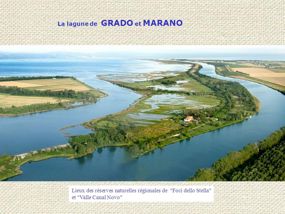 La lagune de GRADO et MARANO Lieux des réserves naturelles régionales de Foci dello Stella et Valle Canal Novo