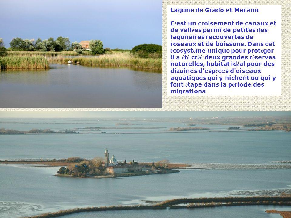 Lagune de Grado et Marano C ' est un croisement de canaux et de vall é es parmi de petites î les lagunaires recouvertes de roseaux et de buissons.