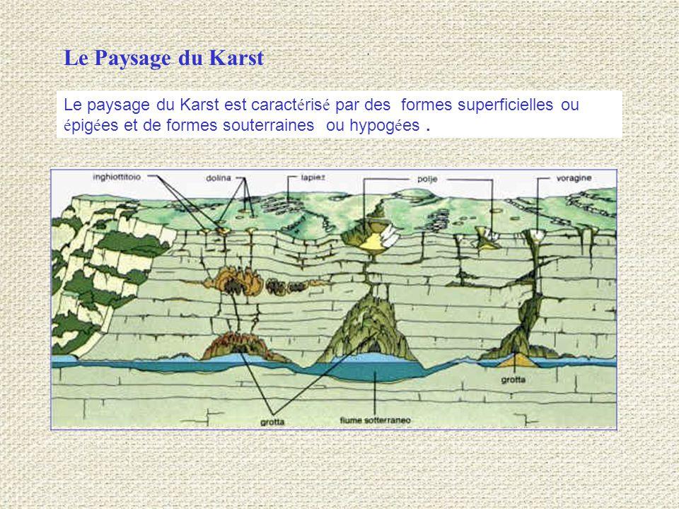 Le paysage du Karst est caract é ris é par des formes superficielles ou é pig é es et de formes souterraines ou hypog é es.