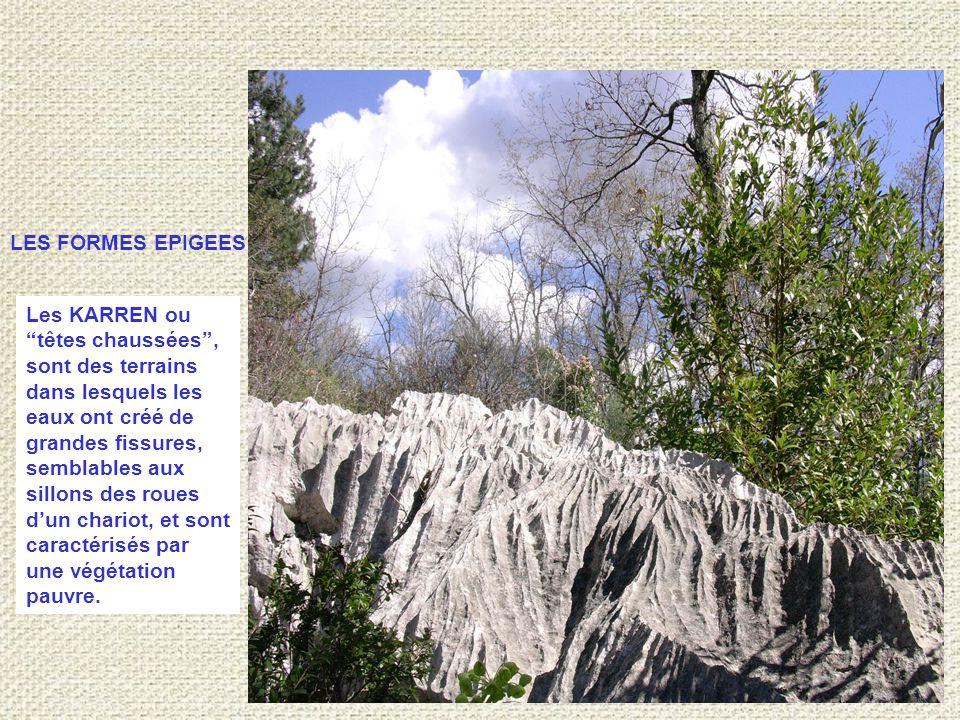 Les KARREN ou têtes chaussées , sont des terrains dans lesquels les eaux ont créé de grandes fissures, semblables aux sillons des roues d'un chariot, et sont caractérisés par une végétation pauvre.