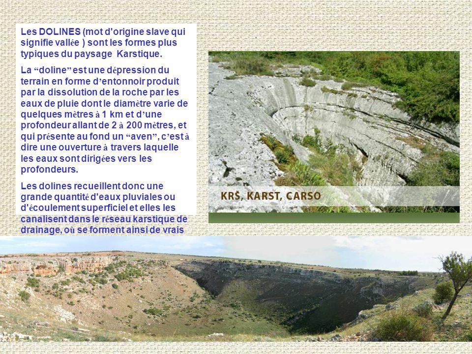 Les DOLINES (mot d origine slave qui signifie vall é e ) sont les formes plus typiques du paysage Karstique.