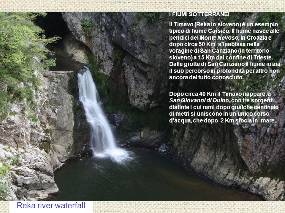 Reka river waterfall I FIUMI SOTTERRANEI Il Timavo (Reka in sloveno) è un esempio tipico di fiume Carsico.