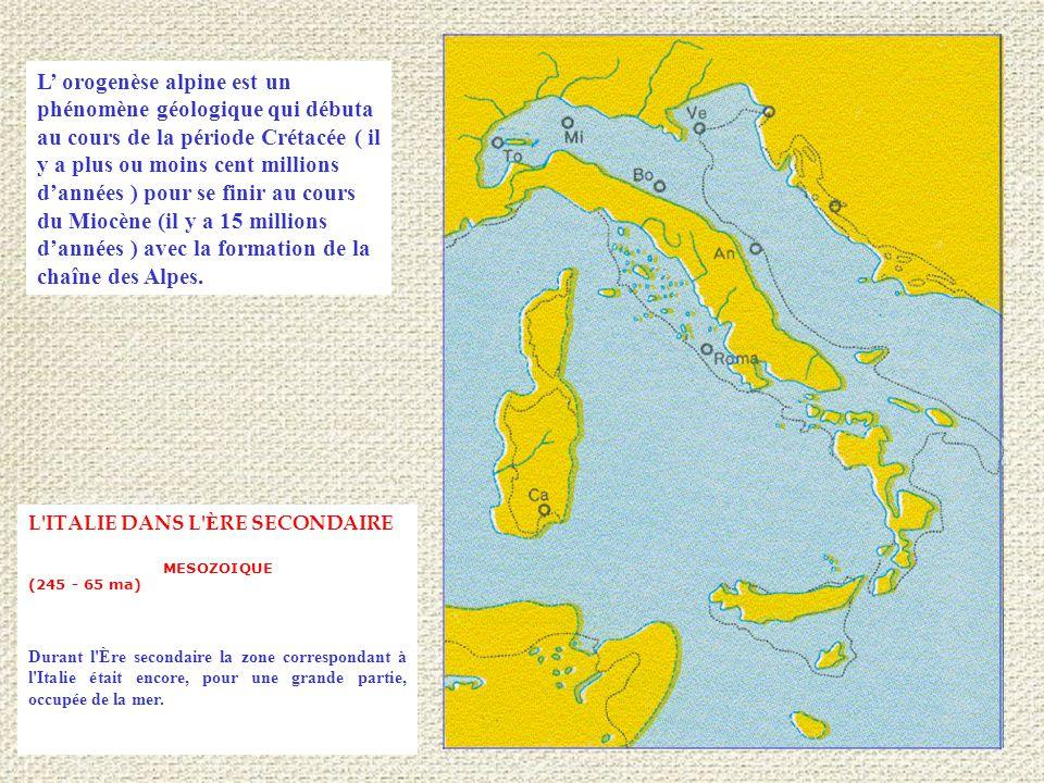 L ITALIE DANS L È RE SECONDAIRE MESOZOIQUE (245 - 65 ma) Durant l Ère secondaire la zone correspondant à l Italie était encore, pour une grande partie, occupée de la mer.