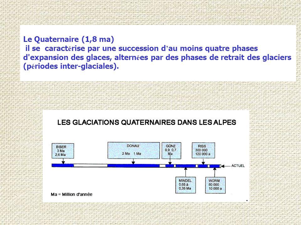 Le Quaternaire (1,8 ma) il se caract é rise par une succession d ' au moins quatre phases d expansion des glaces, altern é es par des phases de retrait des glaciers (p é riodes inter-glaciales).