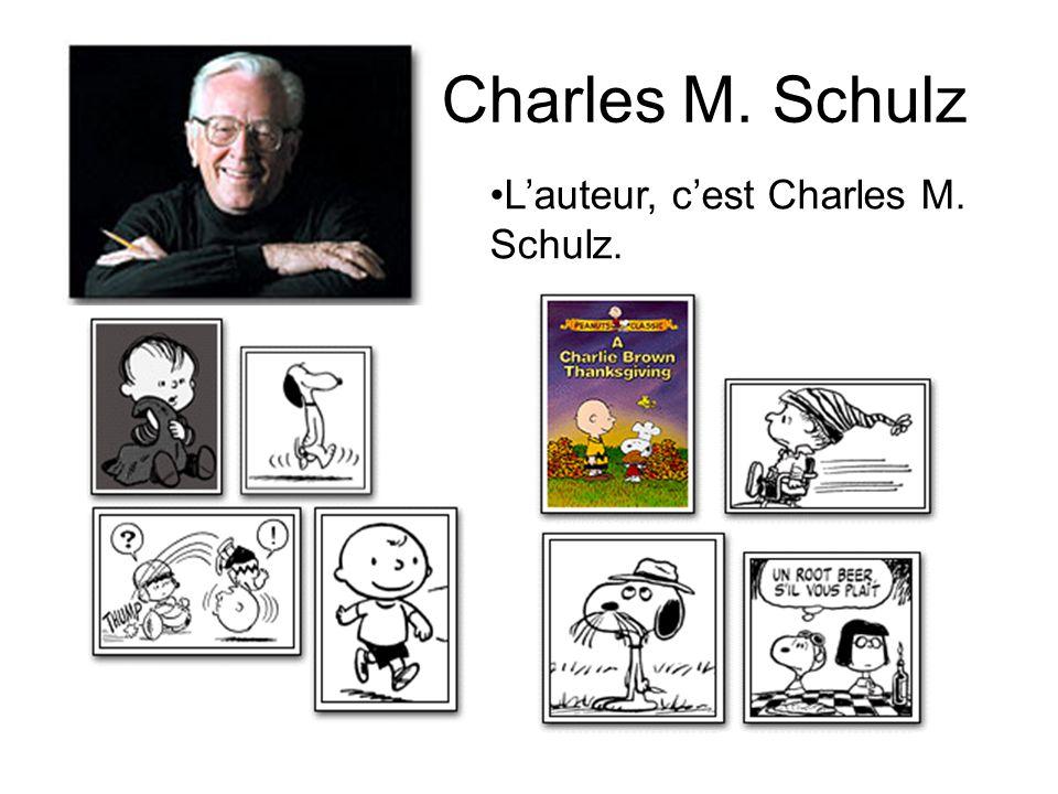 Charlie Brown C'est un petit garçon. Il porte souvent un pull jaune et noir. Il n'a pas de chance.