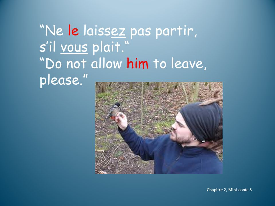 Chapitre 2, Mini-conte 3 Ne le laissez pas partir, s'il vous plait. Do not allow him to leave, please.
