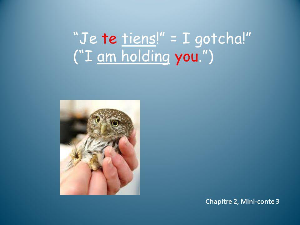 Je te tiens! = I gotcha! ( I am holding you. ) Chapitre 2, Mini-conte 3