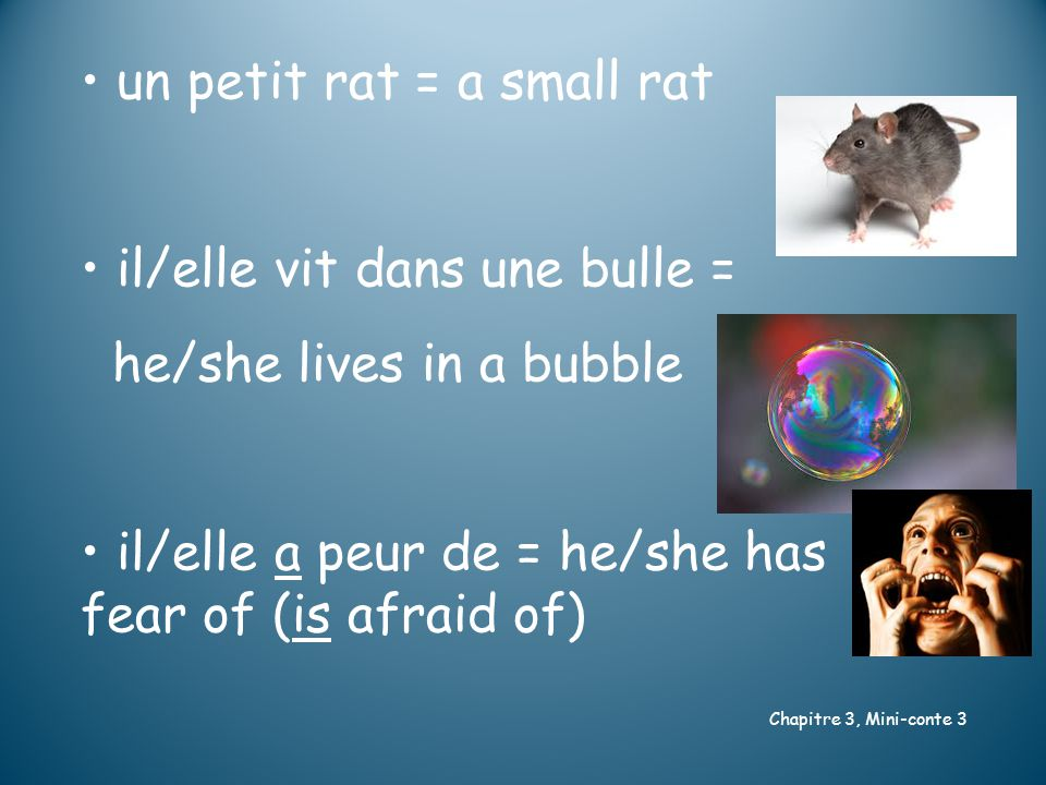 Chapitre 3, Mini-conte 3 un petit rat = a small rat il/elle vit dans une bulle = he/she lives in a bubble il/elle a peur de = he/she has fear of (is afraid of)
