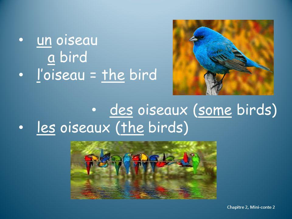 un oiseau a bird l'oiseau = the bird des oiseaux (some birds) les oiseaux (the birds) Chapitre 2, Mini-conte 2