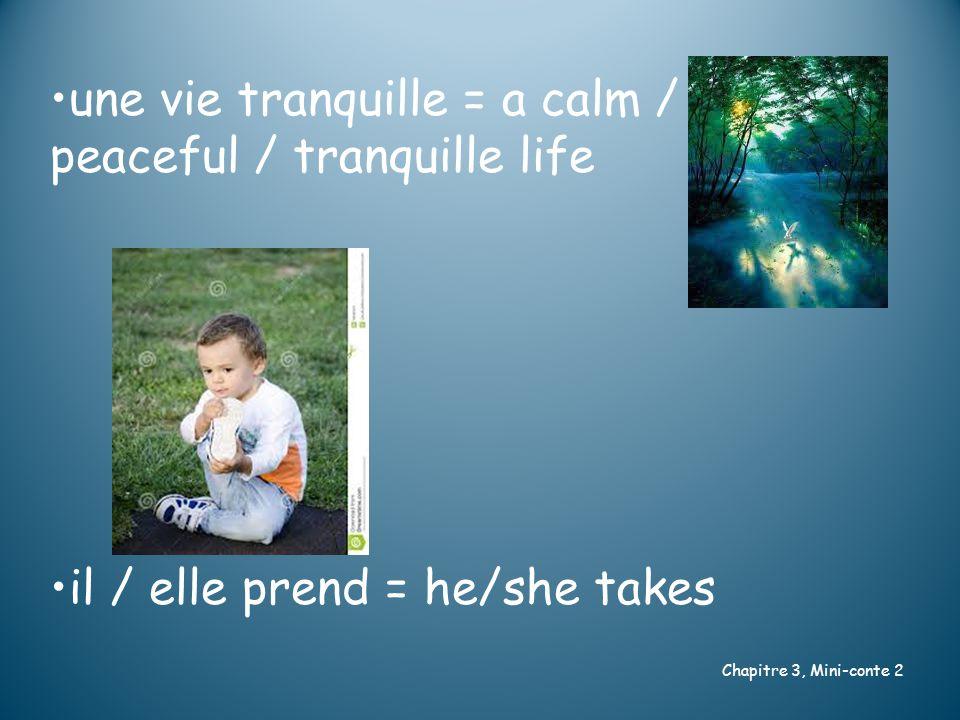 une vie tranquille = a calm / peaceful / tranquille life il / elle prend = he/she takes Chapitre 3, Mini-conte 2