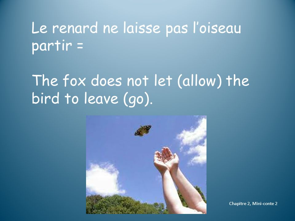 Le renard ne laisse pas l'oiseau partir = The fox does not let (allow) the bird to leave (go).