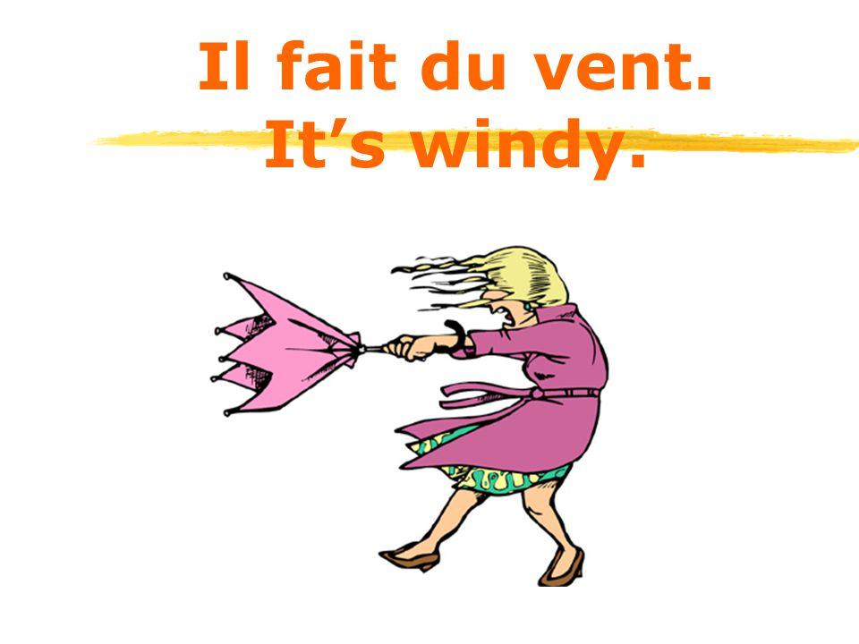 Il fait du vent. It's windy.