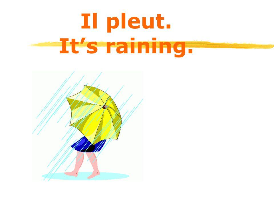 Il pleut. It's raining.