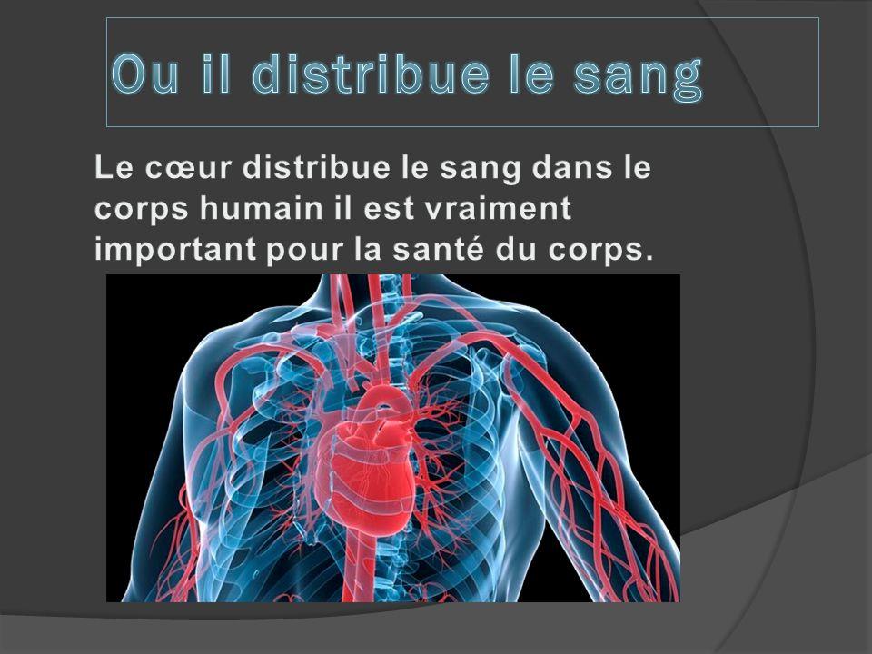 Le cœur est un organe vitale et creux il est situer entre les poumons, il pompe le sang pour qui fait passer le sang dans les veines le cœur bat presque 100 000 fois par jour il pompe 8 000 litres par jour un des coté du cœur renvoie le sang pauvre en oxygène au poumons.