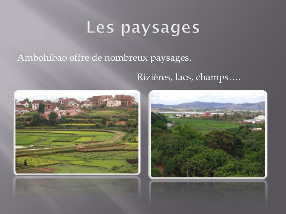 Ambohibao offre de nombreux paysages. Rizières, lacs, champs….