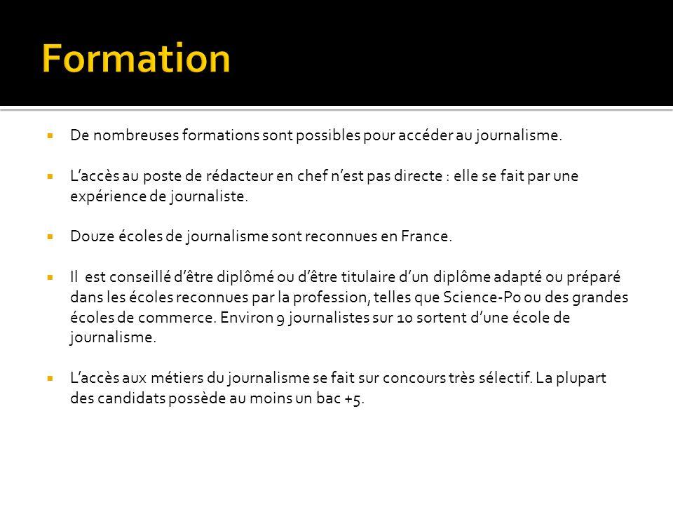  De nombreuses formations sont possibles pour accéder au journalisme.  L'accès au poste de rédacteur en chef n'est pas directe : elle se fait par un