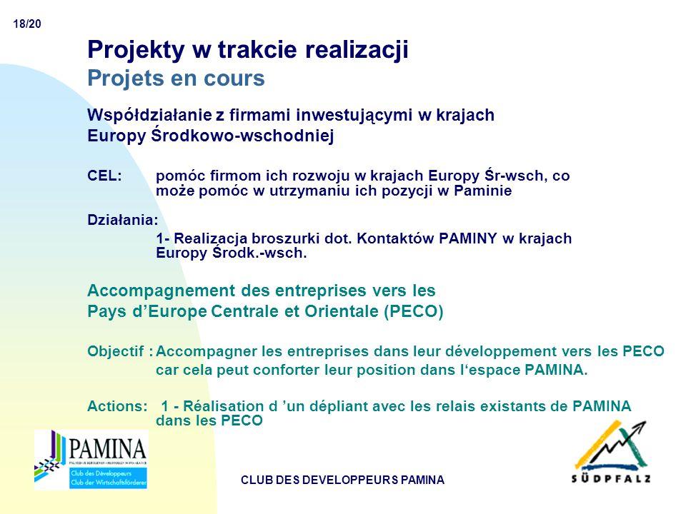 18/20 CLUB DES DEVELOPPEURS PAMINA Projekty w trakcie realizacji Projets en cours Współdziałanie z firmami inwestującymi w krajach Europy Środkowo-wschodniej CEL:pomóc firmom ich rozwoju w krajach Europy Śr-wsch, co może pomóc w utrzymaniu ich pozycji w Paminie Działania: 1- Realizacja broszurki dot.