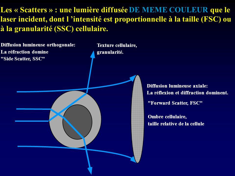 Diffusion lumineuse axiale: La réflexion et diffraction dominent.