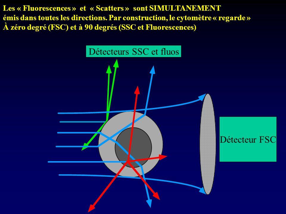 Les « Fluorescences » et « Scatters » sont SIMULTANEMENT émis dans toutes les directions. Par construction, le cytomètre « regarde » À zéro degré (FSC